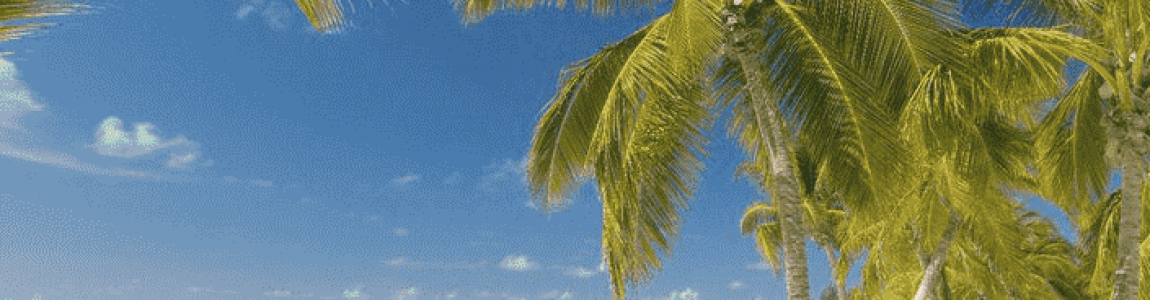The top 10 most beautiful beaches in the Dominican Republic