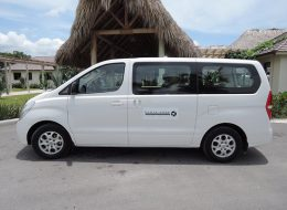 Private Arrival Transfer: Punta Cana Airport to Hotels